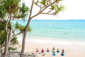 Content Creation, Visit Noosa, Luxeescapesnoosa, Little Cove, Noosa Photographer, Noosa, Photographer Sunshine Coast